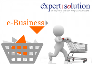 ES E-Business Solution, Expert Solution