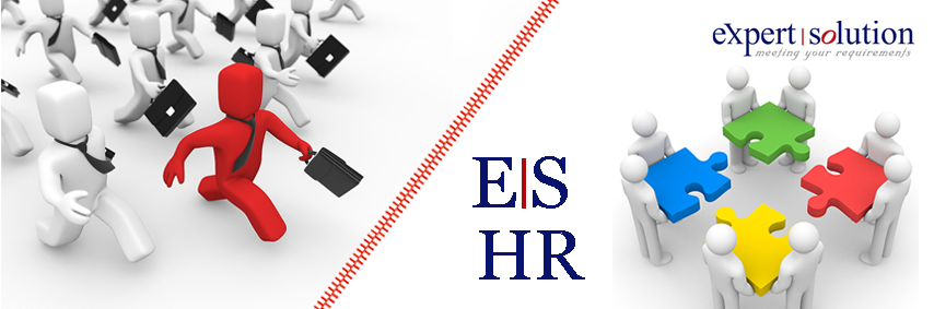 Expert Solution Human Resources Management, ES HR